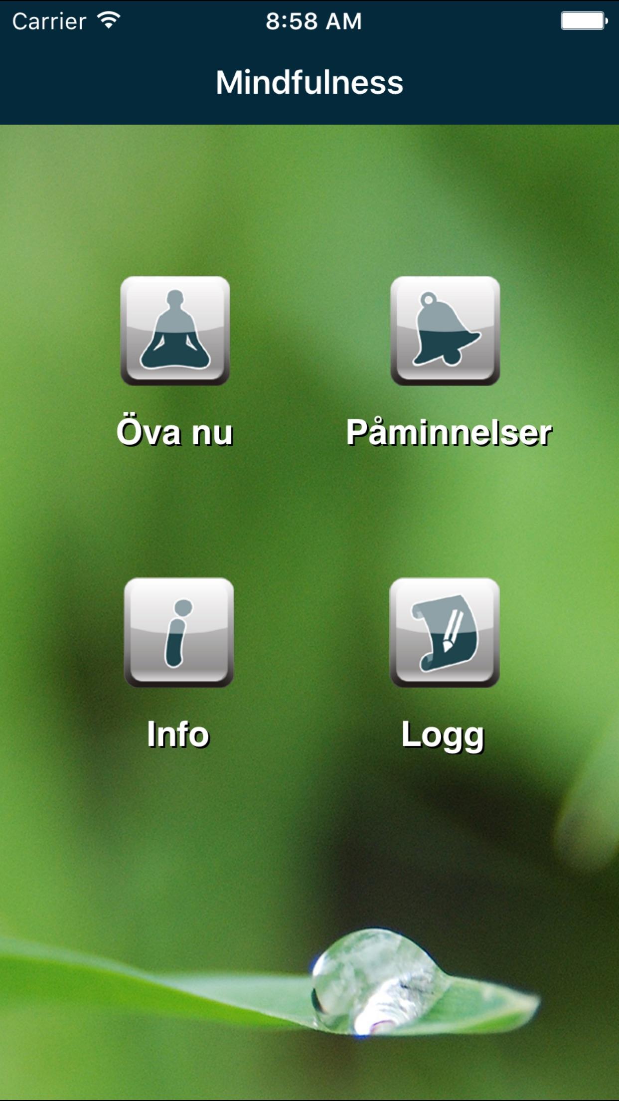 Dagliga droppar mindfulness Screenshot