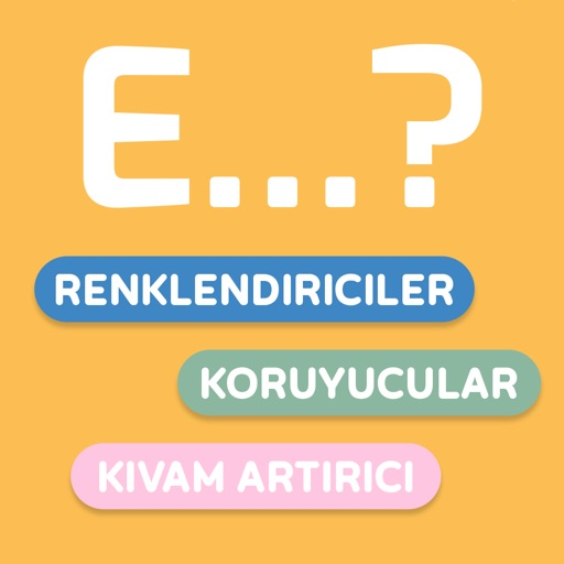 E-Numaralar