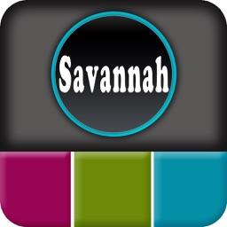 Savannah Offline Map Explorer