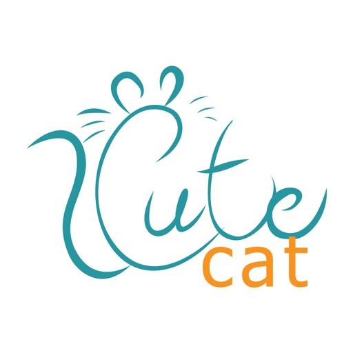 cute cat store