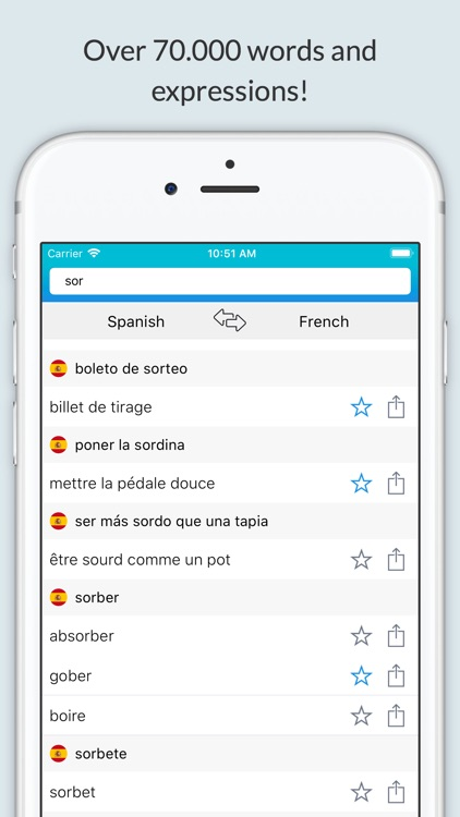 French Spanish Dictionary+