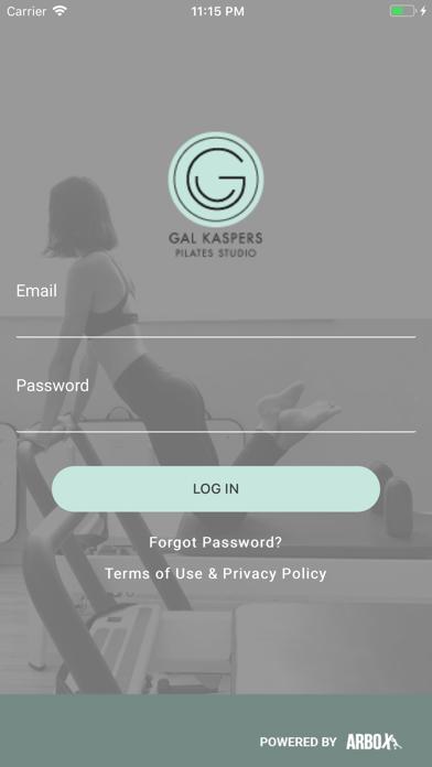 Gal Kaspers Studio screenshot 1