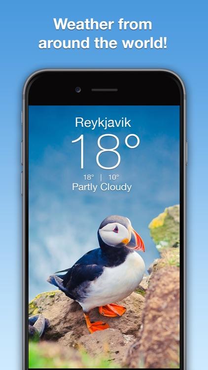 Wildlife Wallpaper Weather screenshot-4