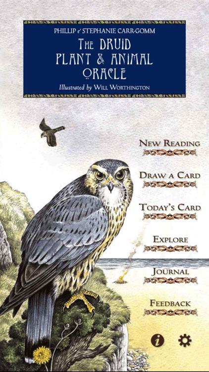 Druid Oracle Cards