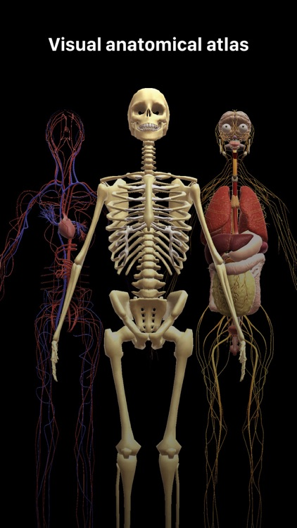 Discover Human Body AR screenshot-1