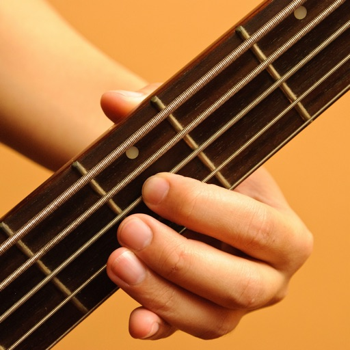 How to play Bass Guitar PRO