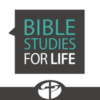 Codes for Bible Studies for Life Hack