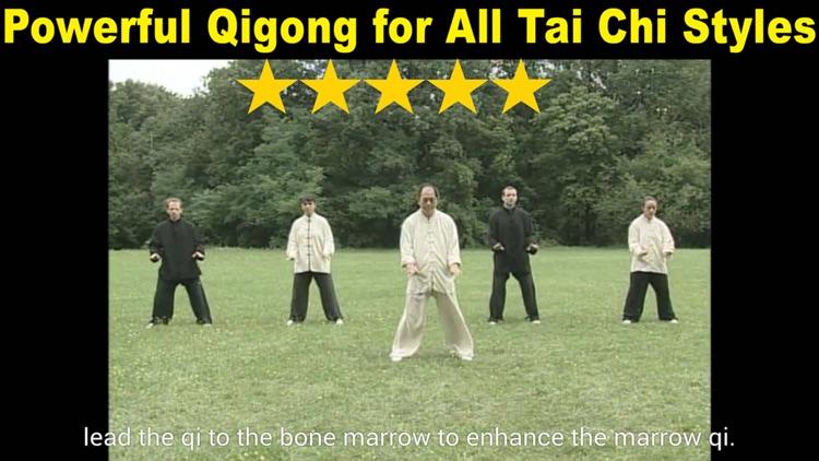 Tai Chi Ball Qigong screenshot-3