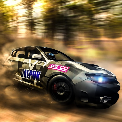 Rally Drive Simulator