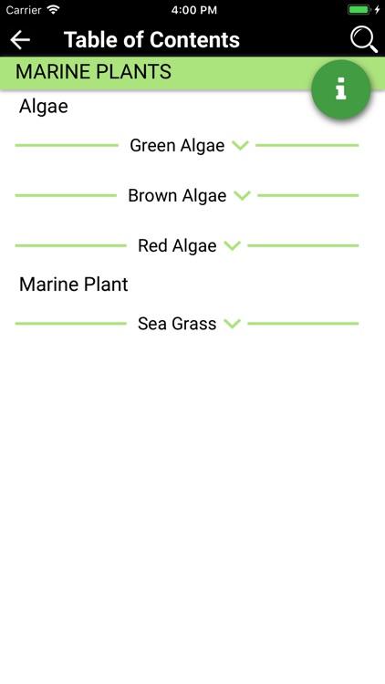 Marine Life - North Atlantic