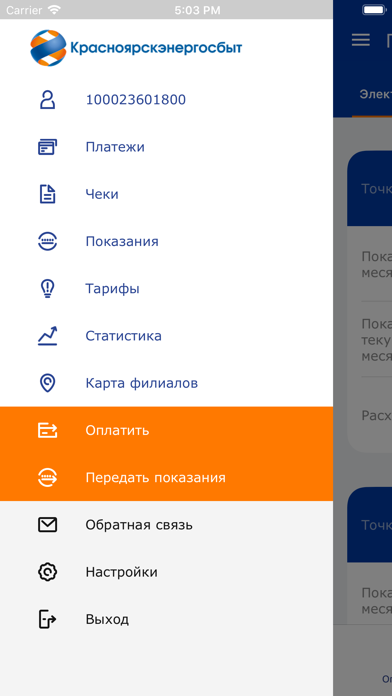 КрасноярскэнергосбытСкриншоты 1