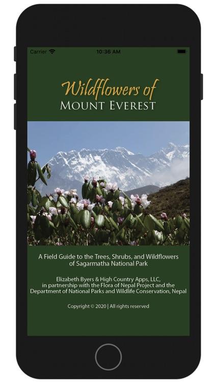 Wildflowers of Mount Everest