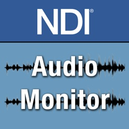NDI Audio