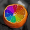 Color Changer-Coloring Editor - iPadアプリ
