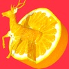 Fruit Carving Game - iPadアプリ