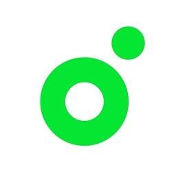 멜론(Melon)