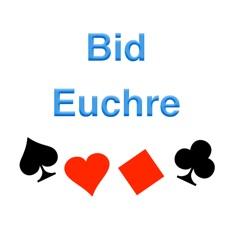 Activities of Bid Euchre