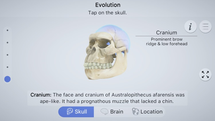 Brainapse screenshot-0