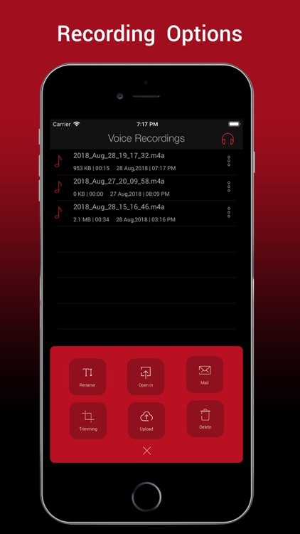 Voice Recorder HD Pro screenshot-0