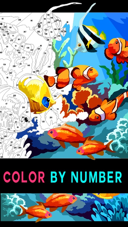 Color by Number Adult coloring
