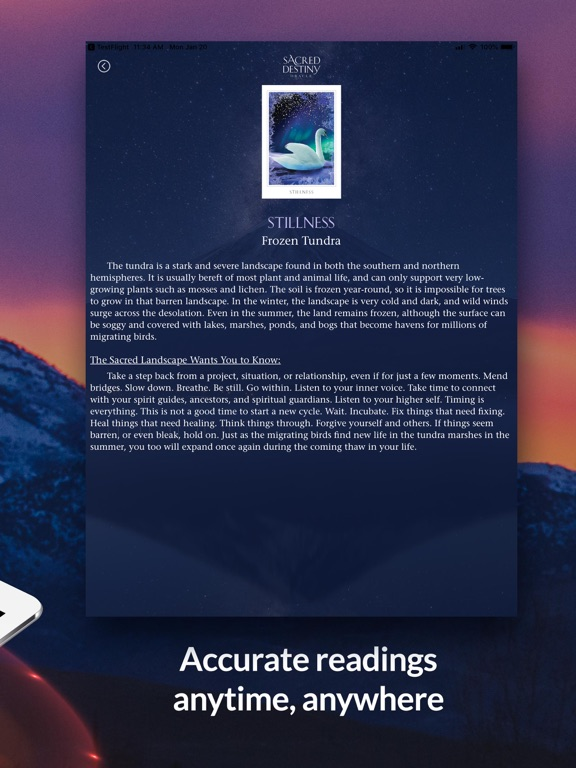 Sacred Destiny Oracle screenshot 10