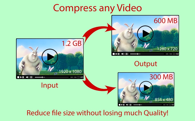 Compress Any Video