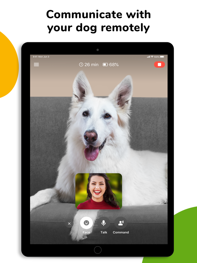 TappyTaps Launches Barkio 1.0 - Help Pet Owners to Monitor Their Dogs Image