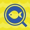 フィッシュ-AIが魚を判定する未来の魚図鑑