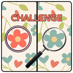 Five Differences Challenge
