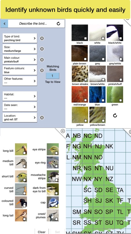 Birds of Britain Pro screenshot-5