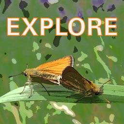 Explore Wild Essex