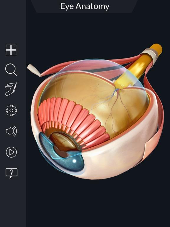 My Eye Anatomy screenshot 11