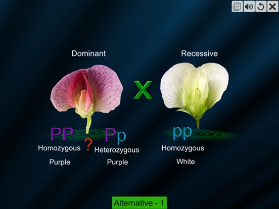 Test Cross: pea flower screenshot 9