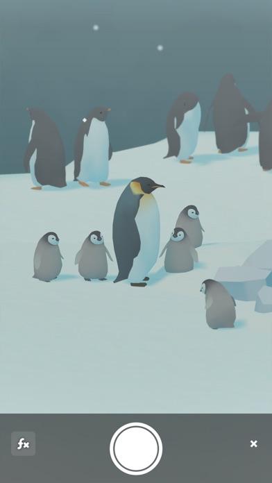 ペンギンの島のおすすめ画像7