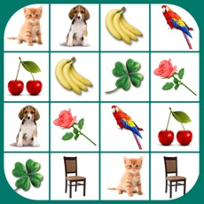 Activities of Brain game. Picture Match