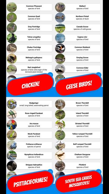 BIRDS & ORNITHOLOGY Quiz screenshot-3