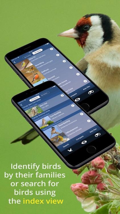 Bird Song Id UK screenshot-6