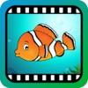 Video Touch - 海洋生物 - iPadアプリ