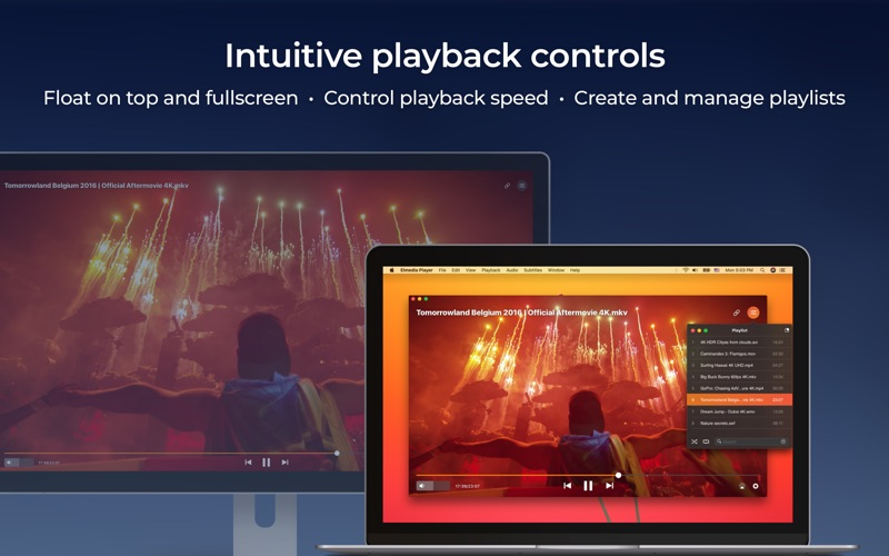 Elmedia Player Screenshot