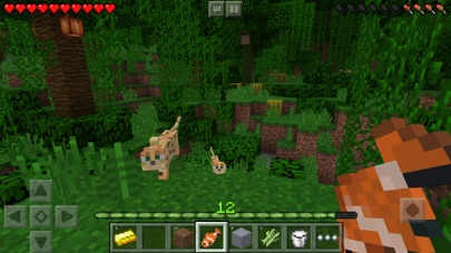 Screenshot for Minecraft in Philippines App Store