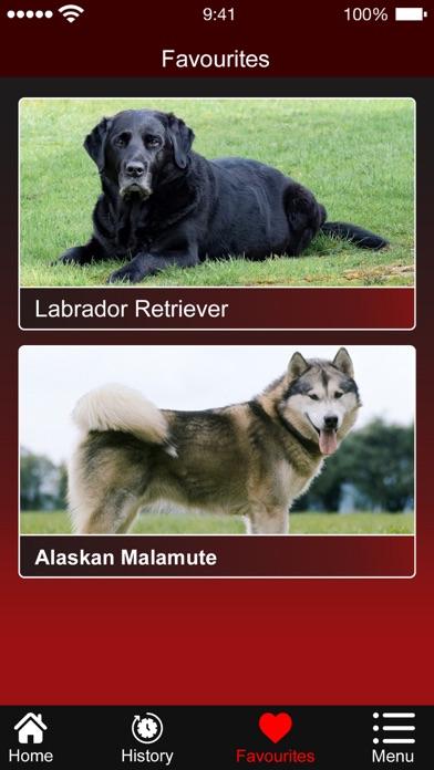 Dog Breed:Scanner & Identifier screenshot 4