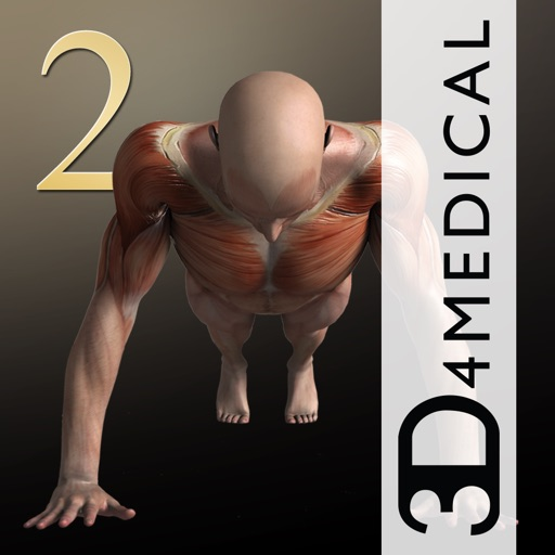 iMuscle 2 - iPhone Edition download