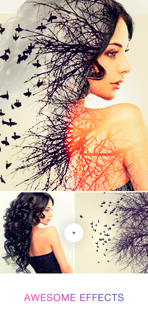 Photo Lab Picture Editor App On The App Store