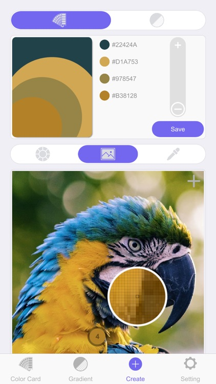 Color Card Pro