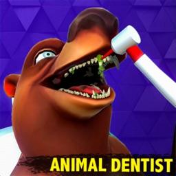 Dentist Wild Bling Doctor