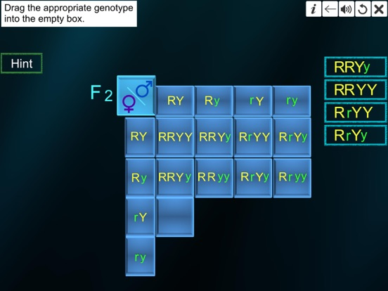 Dihybrid cross screenshot 17