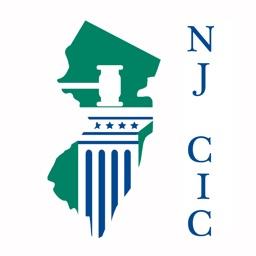 New Jersey Children in Court