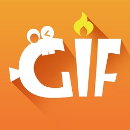 GIF MAKER - video to GIF for U