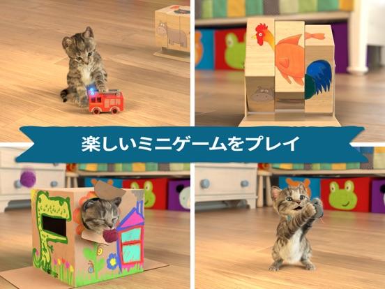 小さな子猫-私の好きな猫  3+のおすすめ画像2