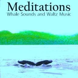Meditations Whales Waltz Music